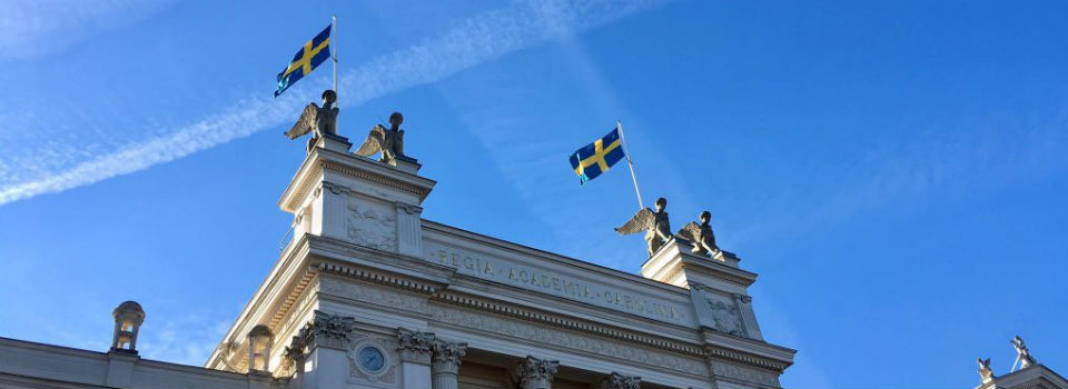 What to Expect the First Year (in Sweden)